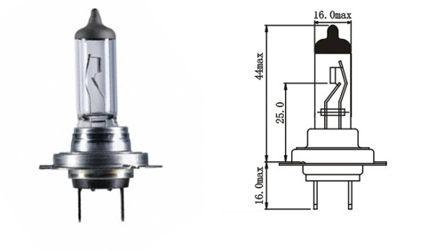 Hodex H7 halogen bulbs